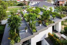 Lovely Roof Garden Adorns Contemporary Home in Vietnam