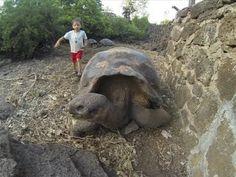 Sailing Across the Pacific Ocean 2013 (Part 9) - Exploring Galapagos, Isla Santa Cruz