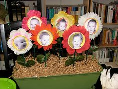 Secret Garden Party - picture display idea (instead of photo banner)