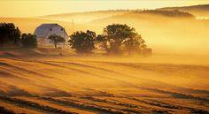 a lovely misty morning on the island...Prince Edward Island, Canada