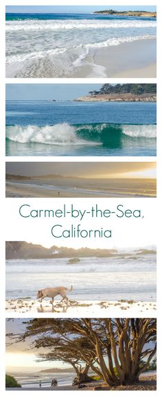 The beautiful white sand beaches in Carmel-by-the-Sea, California. A romantic (and pet-friendly!) getaway on the California Coast. Carmel is nestled between the Monterey Bay and the rugged coast of Big Sur so it makes a great stop on any California Highway 1 road trip.