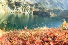 Lago de las Lomas. Hay que llegar al pueblo de Cardaño de Arriba.   10 kms de distancia  4 horas de duración aproximadamente.    Imagen: José Luis Estalayo