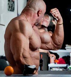 REGELN FÜR DIE MASSEAUFBAU-ERNÄHRUNG Wissenswertes zum Thema Masseaufbau  Mit diesem Artikel möchten wir Fortgeschrittene des Kraftsportbereiches wie auch Anfänger im Bodybuilding-Sport ansprec