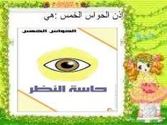"""Résultat de recherche d'images pour """"الحواس الخمسة"""" Images, Ads, Search, Searching"""