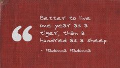 Better to live one year as a tiger, than a hundred as a sheep. - Madonna Madonna