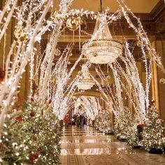 The hotel lobby at The Roosevelt in New Orleans for Christmas Was in NOLA for the sugar bowl a couple years ago. All the holiday decorations were still up.... It's pretty magical.