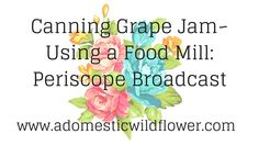Canning Grape Jam~ Using a food mill: Periscope Broadcast from A Domesti...