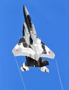 F-15J Japanese fighter