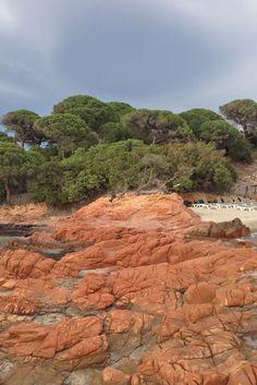 Road Trip en Corse du Sud, itinéraire et activités