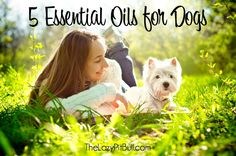 5 Essential Oils for