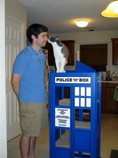 images about Future Home   Cat Trees and Catios on Pinterest    Tardis cat Tree