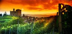 Langhe, patrimonio Unesco dell'umanità - Corriere.it - Grinzane Cavour: il castello (E. Massa)