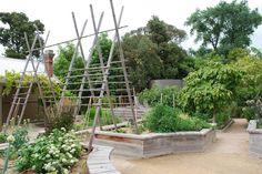 vegetable garden at  Royal Botanic Gardens in Melbourne