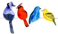 Margaret Berg : birds / animals