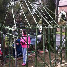 Bamboo playhouse in progress in the back yard! Thanks Virl!