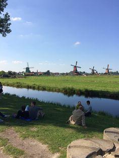 Windmills at Zaanse Schans.