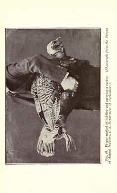 Correct procedure for carrying a turkey. From 1922 via @biodivlibrary: http://s.si.edu/fpQBB #bhlib #foodhistory