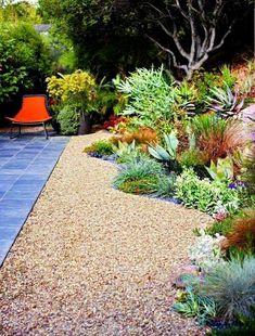 #PinMyDreamBackyard Desert garden