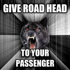 I saw an insanity wolf in the wild for the first time today Had to honk at her so she wouldnt hit the car ahead of her at the light #meme #insanity #wolf #wild #time #honk #wouldnt #ahead #light #funny #humor #comedy #lol