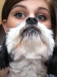 #Dog #Bearding Dog Bearding, Animal Faces, Beards, Best Dogs, Dog Lovers, Halloween Face Makeup, Smile, Funny Stuff, Animals