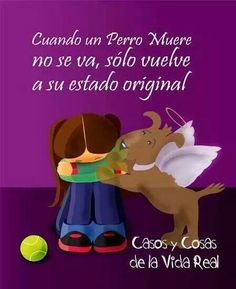 I Love Dogs, Puppy Love, Cute Dogs, Mundo Animal, My Animal, Animals And Pets, Cute Animals, Pet Loss Grief, Loyal Dogs
