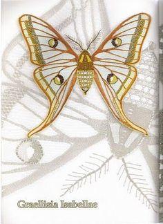 Mariposas - Taller de Encajes - Веб-альбомы Picasa Kirigami, Crochet Butterfly, Lace Heart, Point Lace, Lace Jewelry, Lace Making, Bobbin Lace, Simple Art, Lace Detail