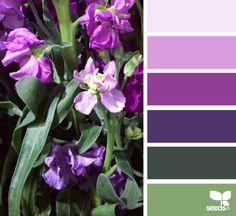Flora Palette - http://design-seeds.com/index.php/home/entry/flora-palette24