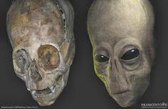ADN resultados para los Nephilim Skulls En Perú ya están y los resultados son absolutamente chocante ¿Cómo podemos expli...