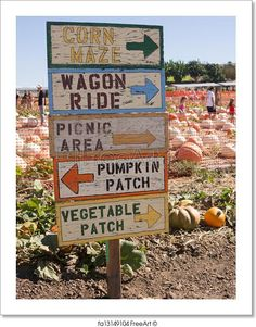 Pumpkin patch and sign. Free art print of Pumpkin Patch Sign. Pumpkin Patch Farm, Pumpkin Patch Birthday, Best Pumpkin Patches, Fall Harvest Party, Harvest Season, Autumn Harvest, Pick Your Own Pumpkins, Creative Pumpkins, Diy Pumpkin