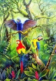 Resultado de imagen para paisajes con lapas y tucanes Bird Paintings On Canvas, Cross Paintings, Animal Paintings, Most Beautiful Birds, Beautiful Fantasy Art, Macaw Parrot For Sale, Rainforest Crafts, Jungle Art, Paintings Famous