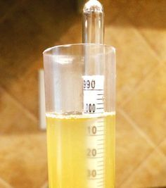 Calibrated Hydrometer In Beer