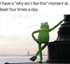 Why am I like this #Kermit