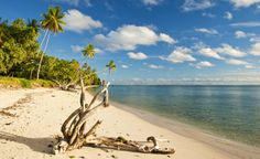 White sandy beach on rustic Huahine, French Polynesia. (From: PHOTOS: South Pacific Islands You CAN Afford!)