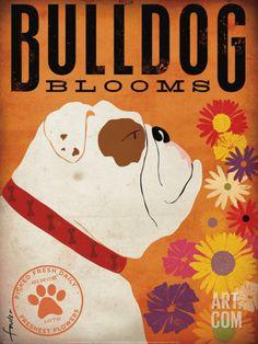 Bulldog Blooms Art Print by Stephen Fowler at Art.com