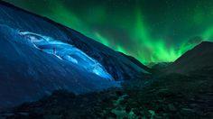 Athabasca Glacier and northern lights in Jasper, A.B. (© Jesús M. García/Getty Images)