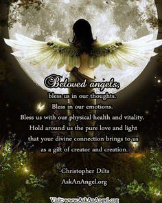 Beloved Angels
