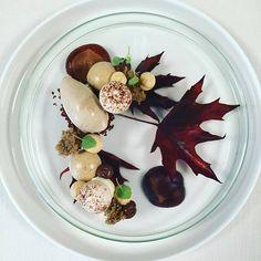 16 Extraordinary Plates from Chef Alphonse Hamelijnck Food Plating, Plating Ideas, Michelin Star Food, Good Food, Yummy Food, Chocolate Coffee, Fall Desserts, Plated Desserts, Food Presentation