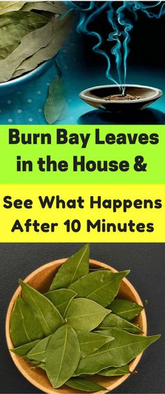 Burn Bay Leaves in the House and See What Happens After 10 Minutes - Workout Hit