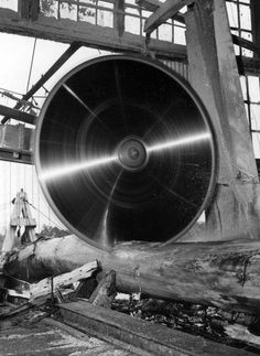 Big circular saw cutting log at Lee Tidewater Cypress Company mill - Perry, Florida… Woodworking for beginners Giant Tree, Big Tree, Old Pictures, Old Photos, Lumber Mill, Logging Equipment, Old Trees, Industrial Photography, Old Florida