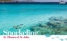 Best beaches for snorkeling in ST Thomas and St John - Also includes where you can buy an underwater card to identify plant and sea life.