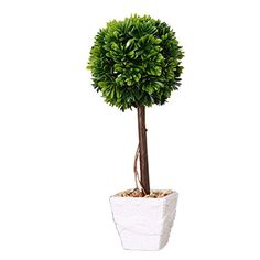 Generic AT-AP-FG Home Shop Decor Artificial Flora Plant Potted Ficus Tree GREEN -- Check out the image by visiting the link.