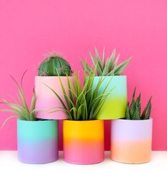 These cement planters are perfect for succulents or small cacti. Choose your two tone color gradient in the drop down menu. See second photo for size reference. Painted Plant Pots, Painted Flower Pots, Painted Pebbles, Outdoor Planters, Diy Planters, Large Ceramic Planters, Large Plant Pots, Ceramic Plant Pots, Diy Recycling