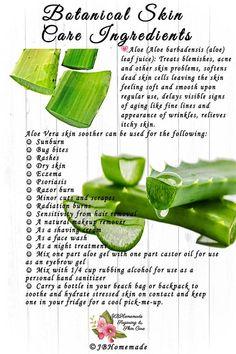 Natural Cures, Natural Skin Care, Natural Health, Natural Life, Aloe Vera Skin Care, Aloe Vera Gel, Aloe Vera For Eczema, Aloe Vera For Skin, Natural Aloe Vera
