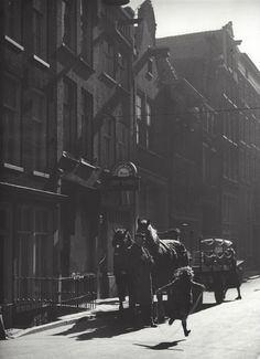 """ Heineken Beer horses "" Amsterdam, about 1952-1956. photo: Kees Scherer"