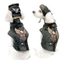 ... Harley Davidson jacket for your dog. These dog clothes are quickly