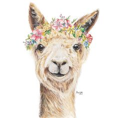 Alpaca Love - adorable drawing of alpaca with flower crown. Named her Luna! Illustration is a mixed media piece, painted first with watercolor pencils from Faber Castell and later drawn with Polychromos color pencils.