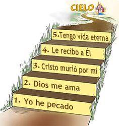 cinco pasos