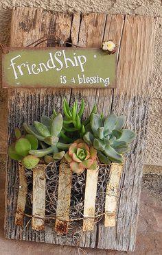 succulent garden on reclaimed barn wood by Tinasittybittygarden