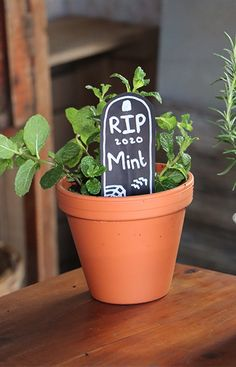Create your own tombstone plant labels to add a Halloween feel to your herb garden. This is a fun and easy project to do with your kids and get into the holiday spirit. #Halloween #plantlabels #makeyourown #funproject #festive #DIYforkids #projectforkids #halloweendecor #spookyseason Easy Projects, Projects For Kids, Diy For Kids, Plant Labels, Spirit Halloween, Herb Garden, Houseplants, Halloween Decorations, Festive