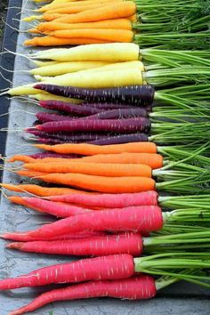 Rainbow Carrots:  Just imagine how gorgeous these beauties will look in salads, side dishes, and more.